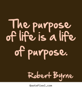 the  purpose of life is  a life with purpose